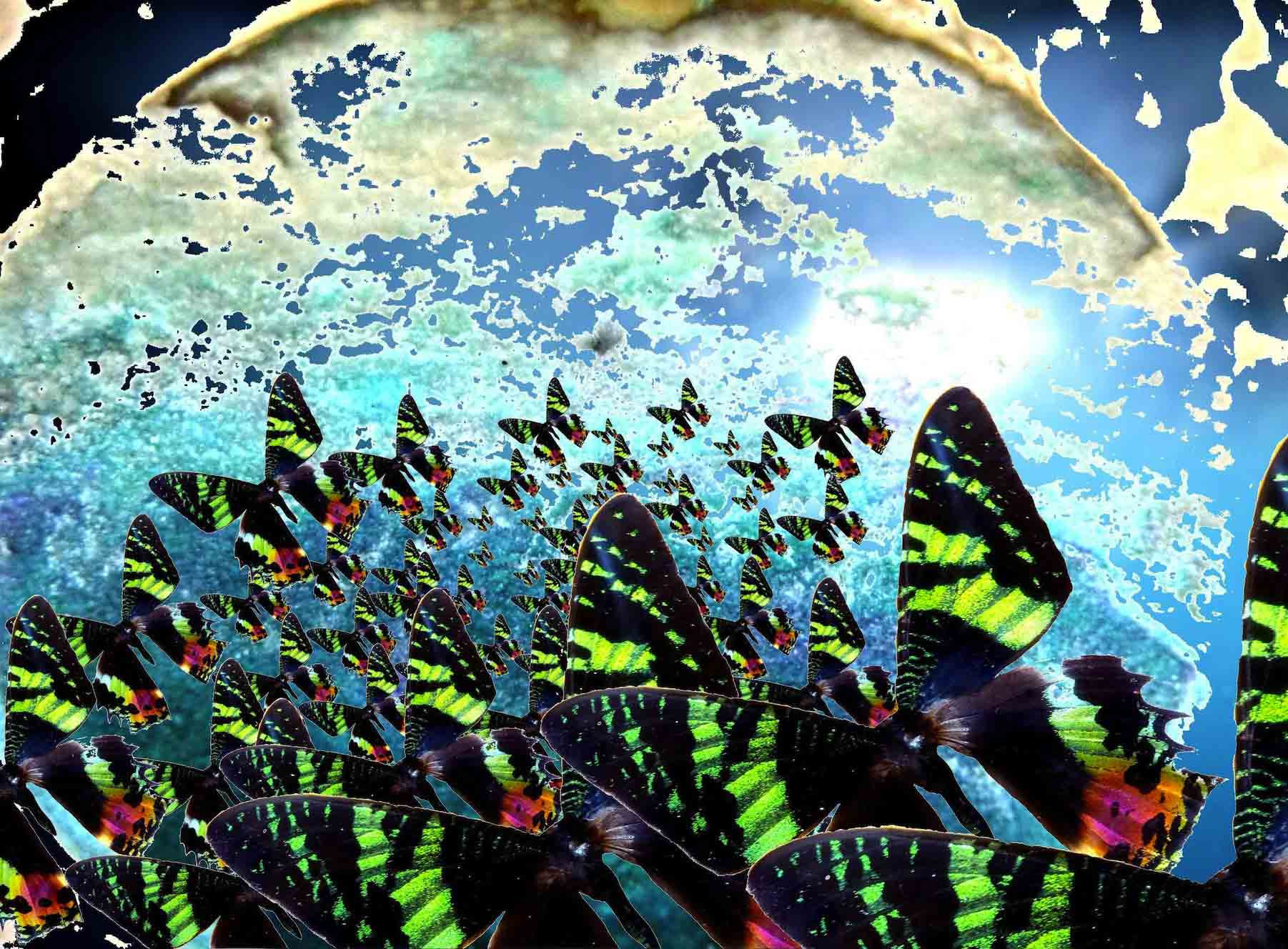 Il Mondo destrutturato di Palumbo fa capolino a Orio al Serio