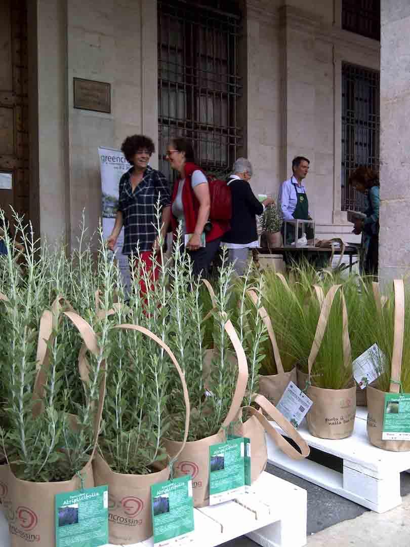 Con il Planting day cala il sipario sul Greencrossing aspettando i migliori paesaggisti del mondo