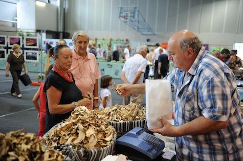 Inaugurata la Mostra del Fungo e delle Natura a Villa d'Ogna