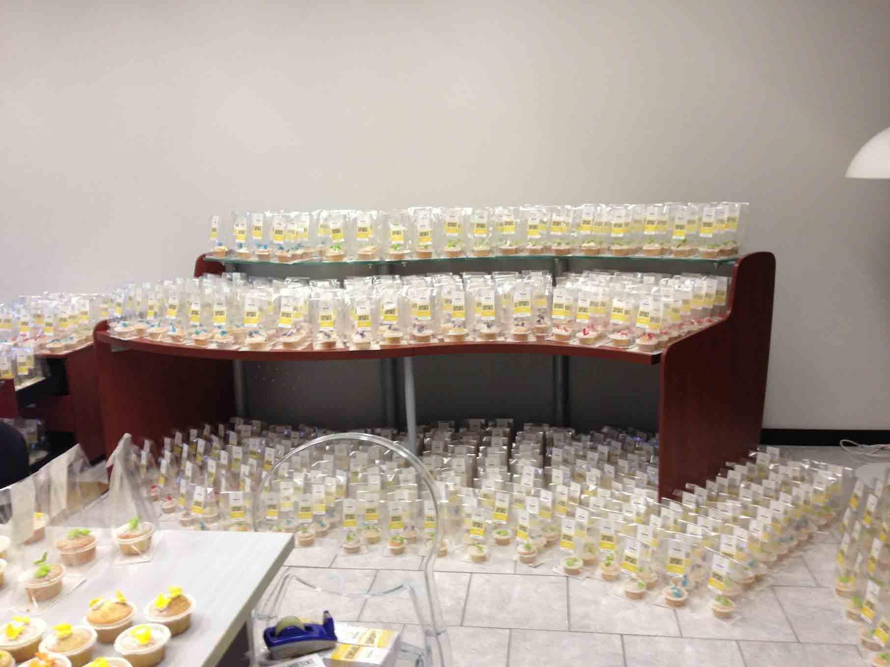 Succede a Lilliput: futuri chef sfornano 4 mila cupcake. iSchool addolcisce Lilliput con 4 mila cupcake
