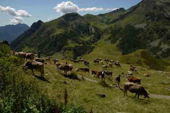 Al via il corso per accompagnatore del Parco delle Orobie in Val Brembana