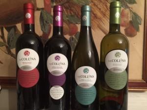 I 4 nuovi vini presentati dall'azienda La Collina