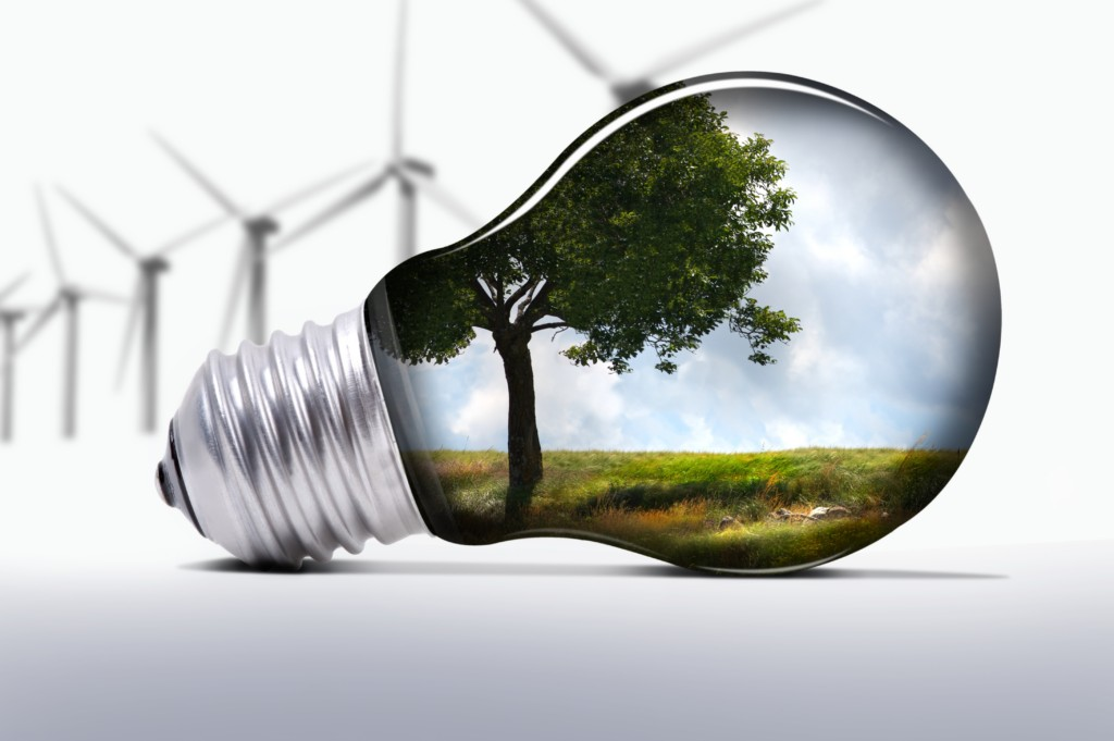 Adiconsum vs Green Network: «Pratiche commerciali scorrette»
