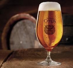 Lezioni al birrificio Otus di Seriate