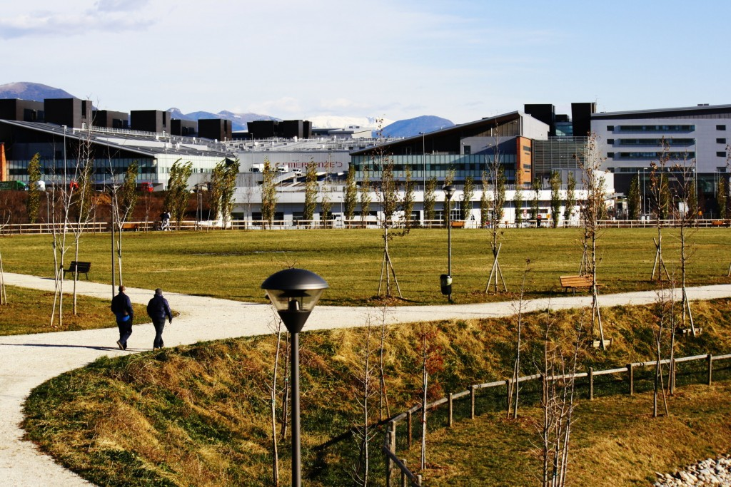50 nuovi alberi nell'area dell'Ospedale Papa Giovanni XXIII