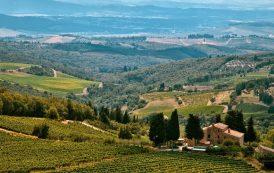 Camminare la terra: vigne e vini d'italia