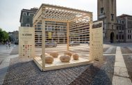 #SCATTONELNIDO: il legno diventa social