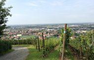 Premi a Merano per i vini del Castello degli Angeli di Carobbio