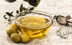Da seminario Veronelli e Airo il nuovo corso dedicato all'olio d'oliva italiano