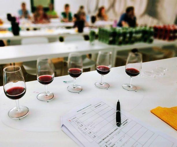 Al Seminario Veronelli gli incontri tecnici firmati Vinidea