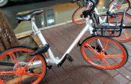 Mobike, aumentano gli iscritti in città