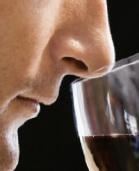 Degustazione vino: un corso in 4 lezioni a Nese di Alzano Lombardo