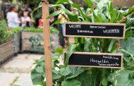 «Food Relations», Seminario Veronelli e ACRA insieme per il cibo come strumento di incontro tra le culture
