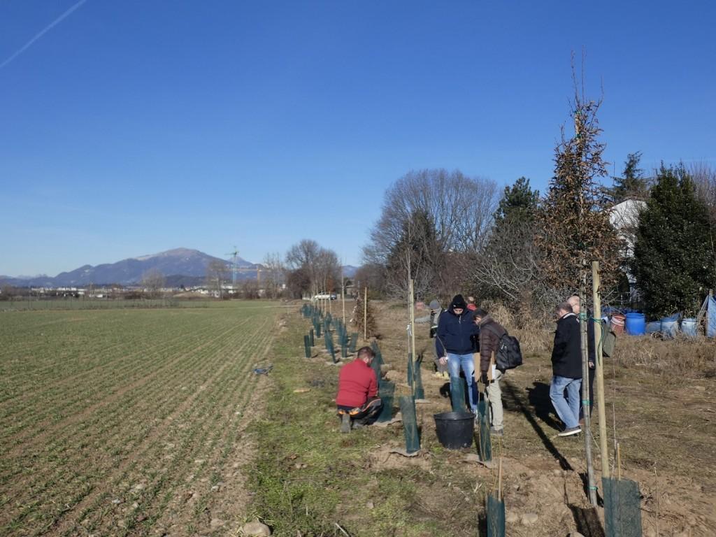 Eco-lavori in corso al parco agricolo: ci sarà un frutteto