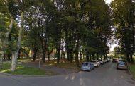 """Malpensata, parco avventura nell'area del """"bosco"""""""