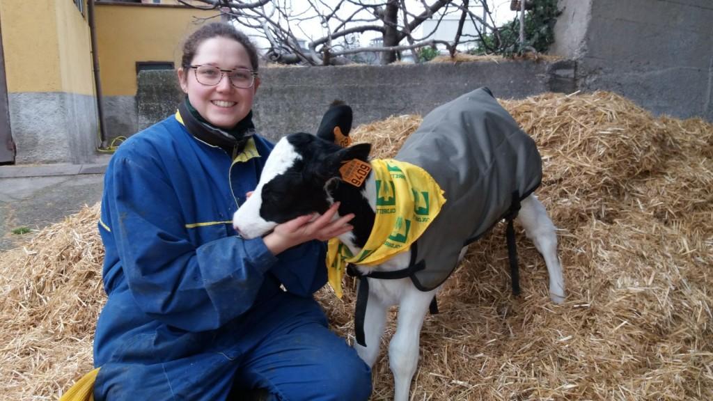 Cappottini e lampade riscaldanti proteggono gli animali dal freddo