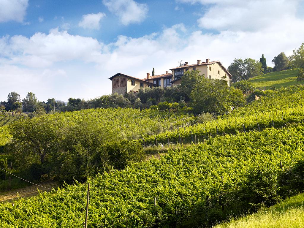 10 vini bergamaschi vincono l'oro a Pramaggiore