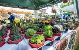 "Floreka 2019 è ""Flowers, arts and crafts"""