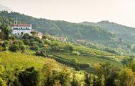 Scopri la Val Pontida tra vino e golosità, domenica 23 giugno