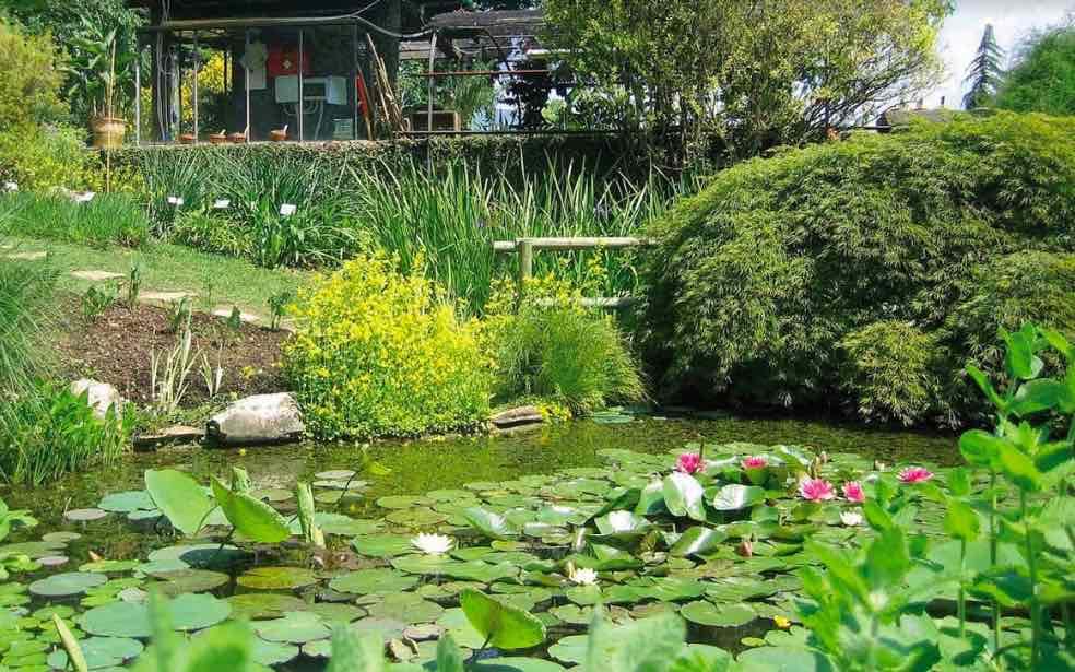 Agosto nella natura grazie agli Orti Botanici della Lombardia