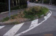 Pulizia delle strade e cura del verde, allarme di Federconsumatori