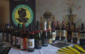 Medaglie d'oro per i vini bergamaschi