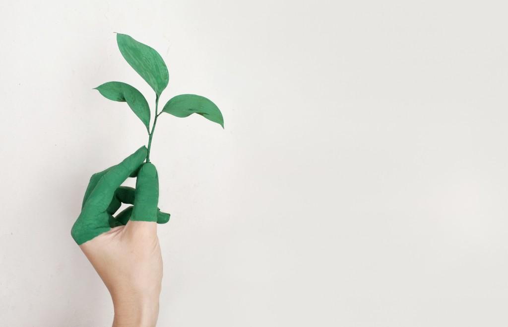 Green New Deal: tavola rotonda in Unibg