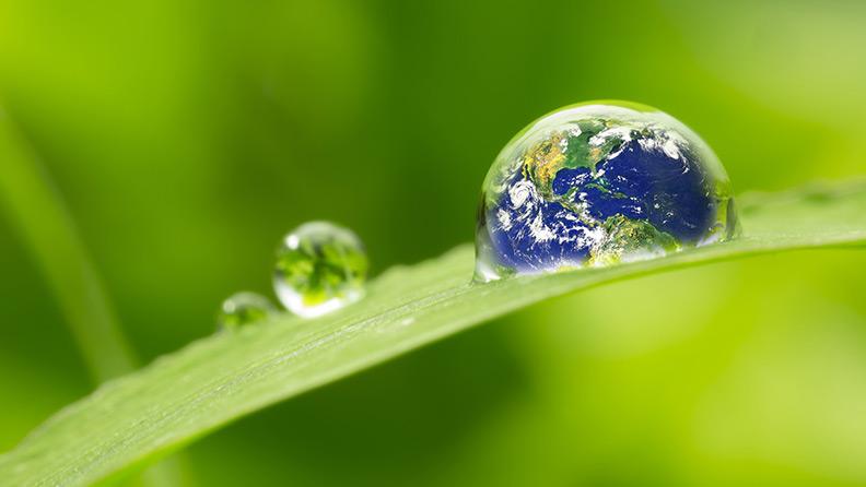 L'Ambiente: un patrimonio che non si schiera