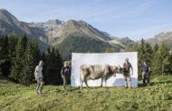 """""""Segni e Sogni d'Alpe – passione, orgoglio e resilienza"""""""