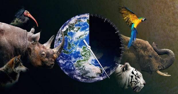 A un passo dall'estinzione