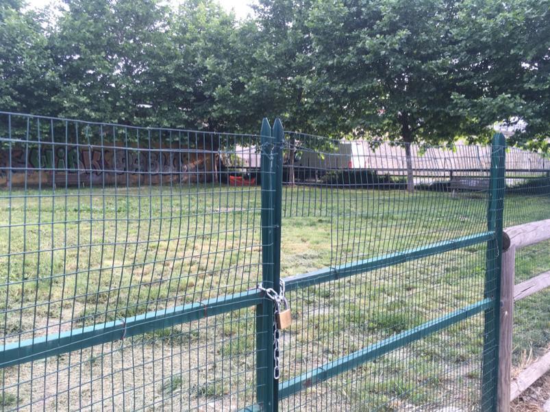Dal 9 giugno riaprono le aree cani nei parchi della città