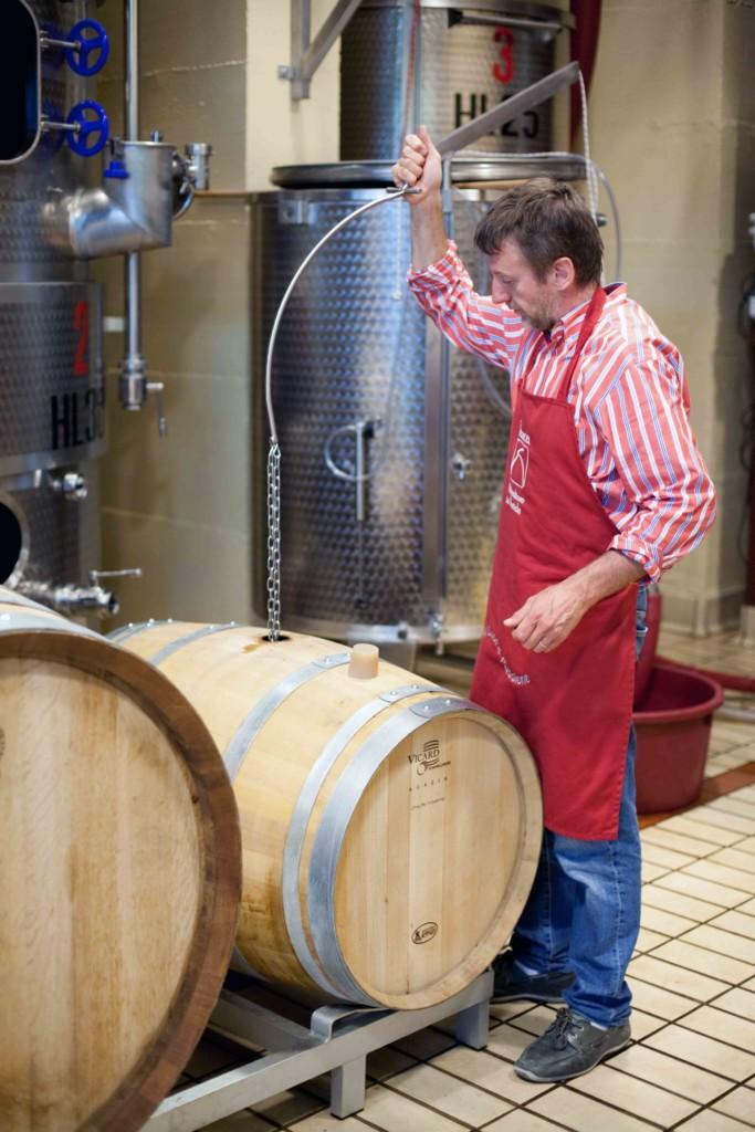 Degustazione di vini bio al Polisena di Pontida
