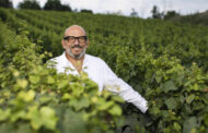 Cà del Bosco stupisce: edizioni numerate di Cuvée Prestige per fissarne la memoria