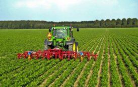 Il settore agroalimentare bergamasco resiste