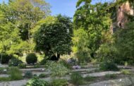 Ad agosto l'orto botanico di Bergamo resta aperto