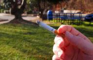 Albino, il sindaco vieta il fumo nei parchi pubblici